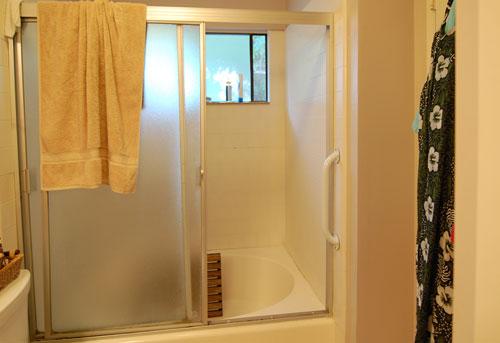 Sierra Madre Master Bath Shower Before Staging/Remodel